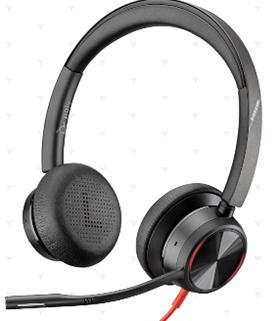 Headsets/Speakers